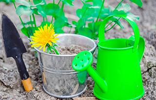Yeşilyurt AVM Mini Club'ta Mart ayında Çiçek Dikimi Atölyesi yesilyurt avm cicek dikimi