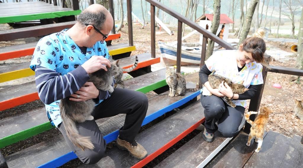 - samsun kedi kasabasi 15 - Mozart'ın Türk Marşıyla Kedilere Yemek Daveti