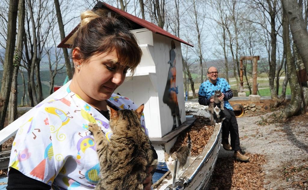 - samsun kedi kasabasi 17 - Mozart'ın Türk Marşıyla Kedilere Yemek Daveti